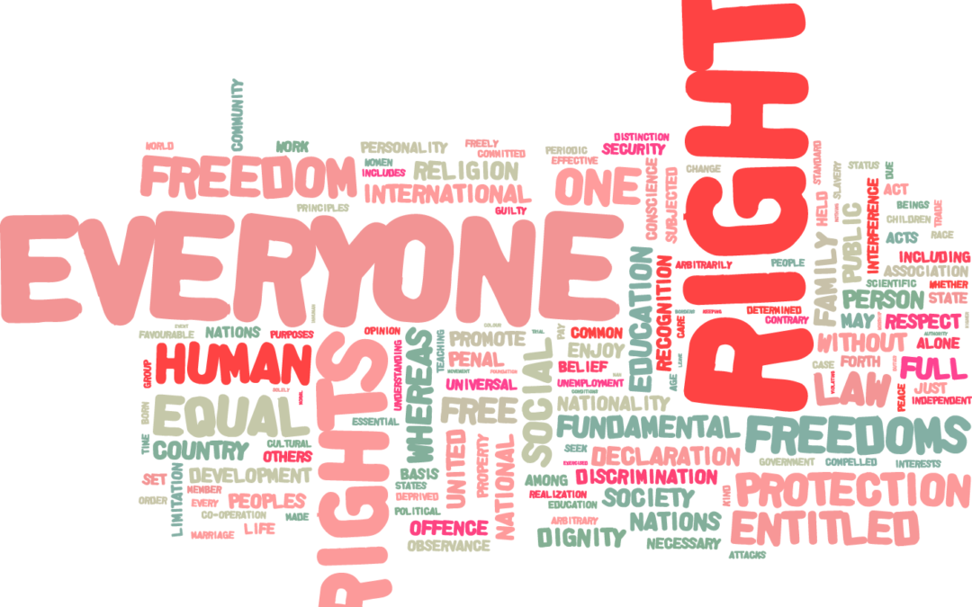 Delegitimating Human Rights Organizations